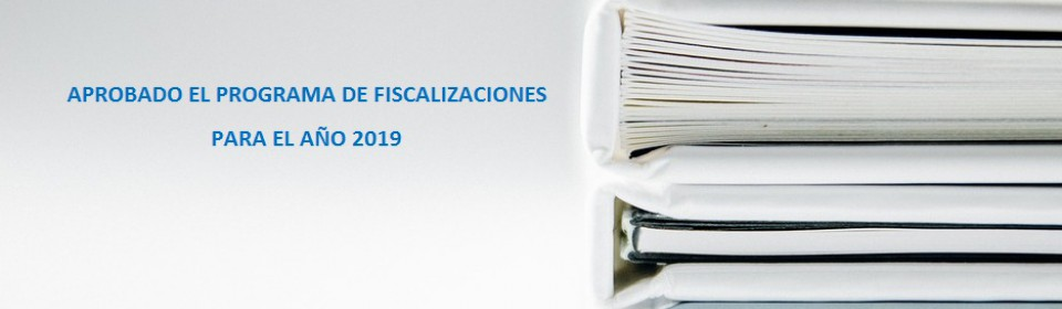 Programa fiscalizaciones 2019