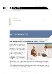 BOLETÍN OCEX Nº 28