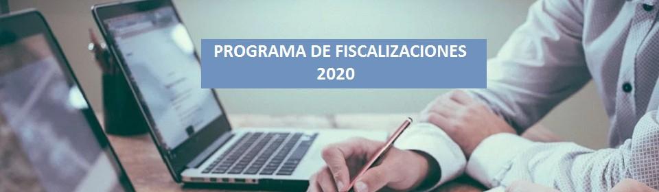 Programa Fiscalización 2020